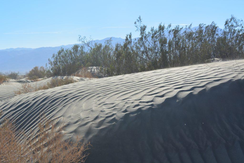 Glittering sand dune